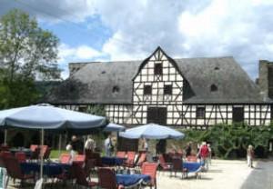 Langenau2007
